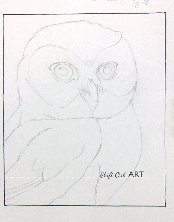 Owl pastel drawing