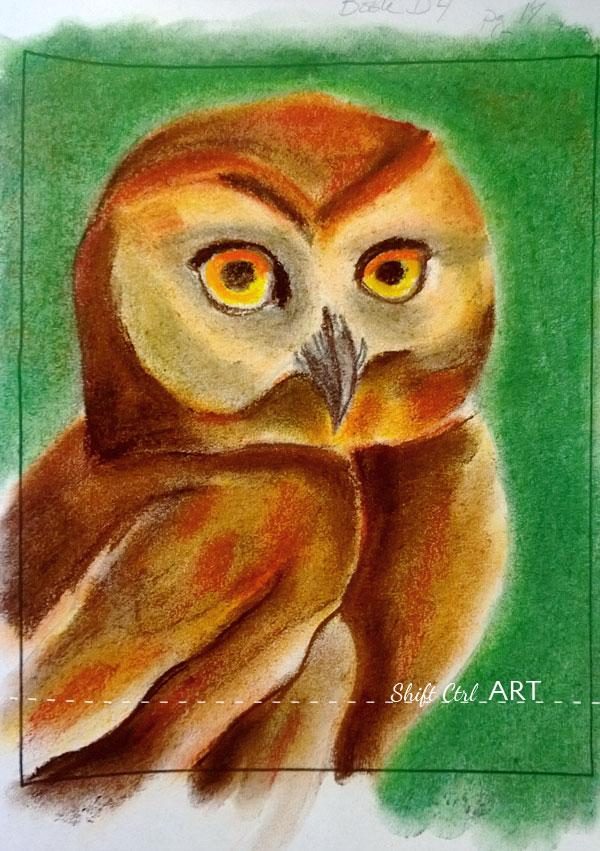Art Work My Newest Pastel An Owl