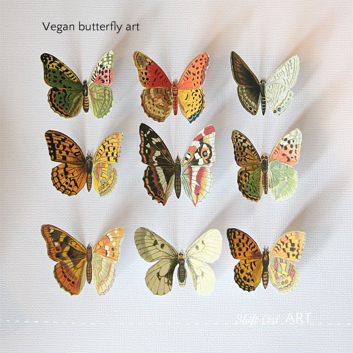 Vegan Butterfly Framed Art Mother S Day Diy Idea