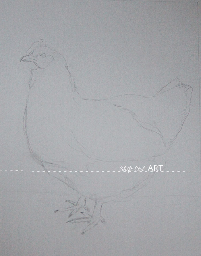Chicken pastel drawing steps 1