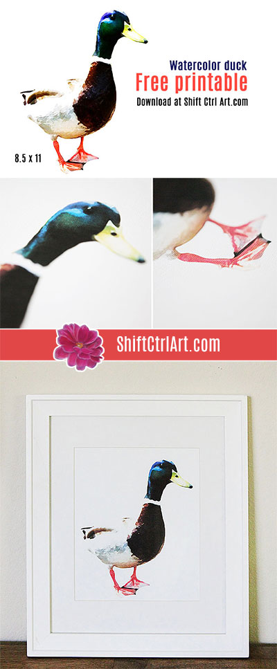 #watercolor #duck #free #printable #art