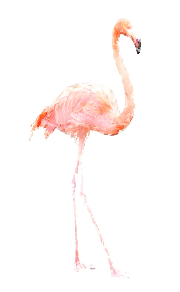 Flamingo art 7