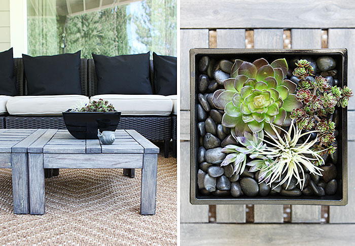 Patio lounge rug pillows forever succulents 1