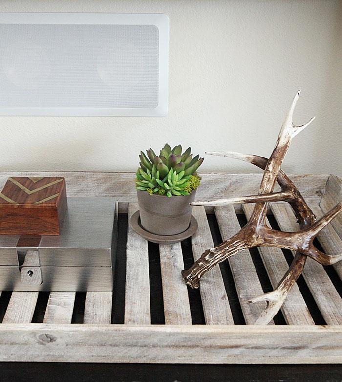 Living room forever succulent