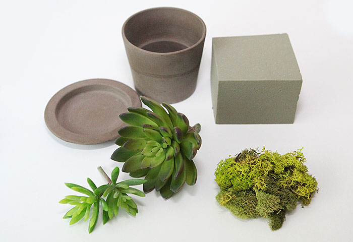 my livingroom is having a moment with a 5 minute diy succulent. Black Bedroom Furniture Sets. Home Design Ideas