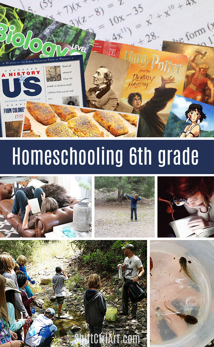 homeschooling 6th grade - recap of what we did this year