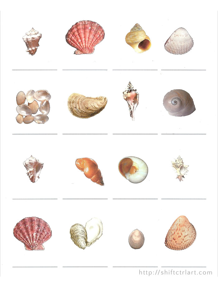 research on mollusks Many species of mollusks,  the program supervisor is dr paul johnson, former director of the tennessee aquarium research institute,.
