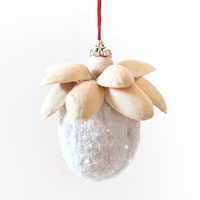 Walnut pistachio ornament
