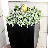 Forever front door planter