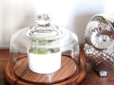 15 minute make-over thrift find: No more cheesy bell jar