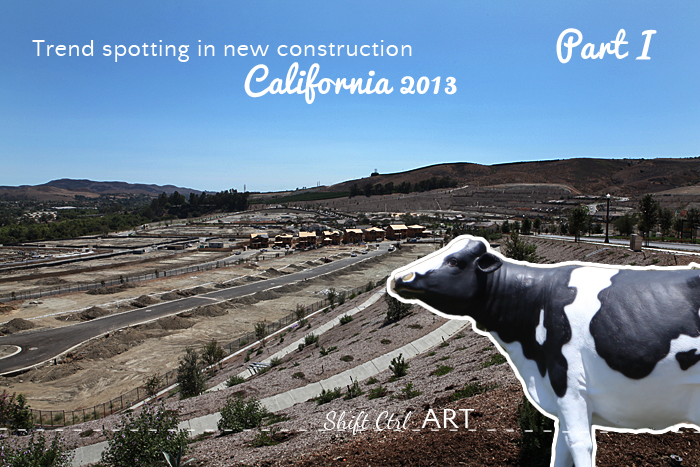Trend spotting in new construction - California 2013