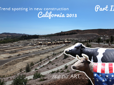 More trend spotting in new construction - California 2013