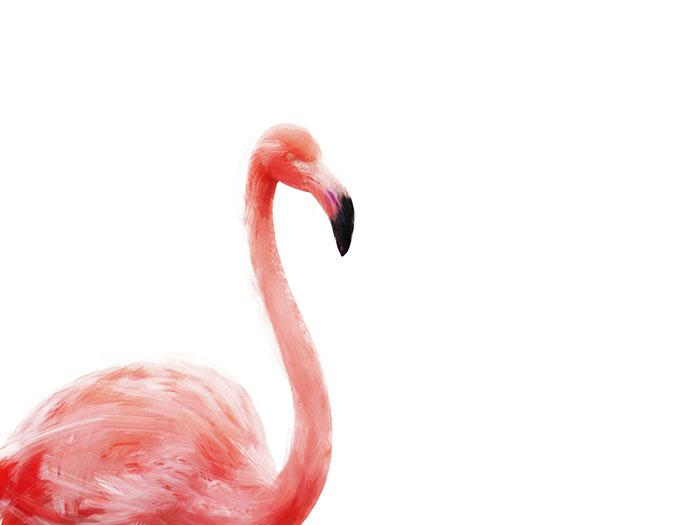 Flamingo art made with Psykopaint - a free resource