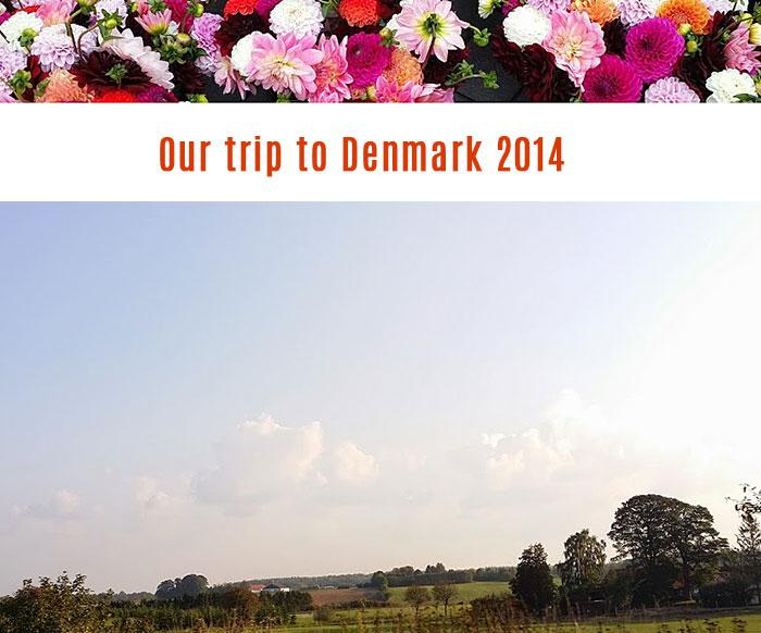Our trip to Denmark